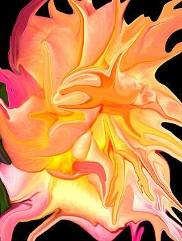 Nature's Beauty by Linda Bylsma