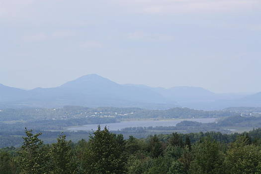 Donna Walsh - Newport from Brownington Lookout