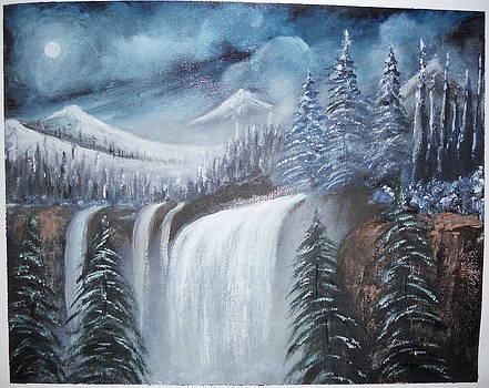 Night In Snow by Ramakant Varma