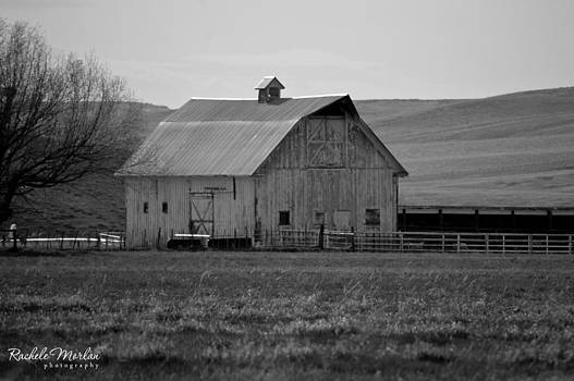 Old Barn by Rachele Morlan