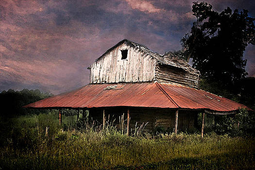 Terry Shoemaker - Old Tobacco Barn