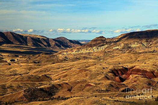Adam Jewell - Painted Landscape