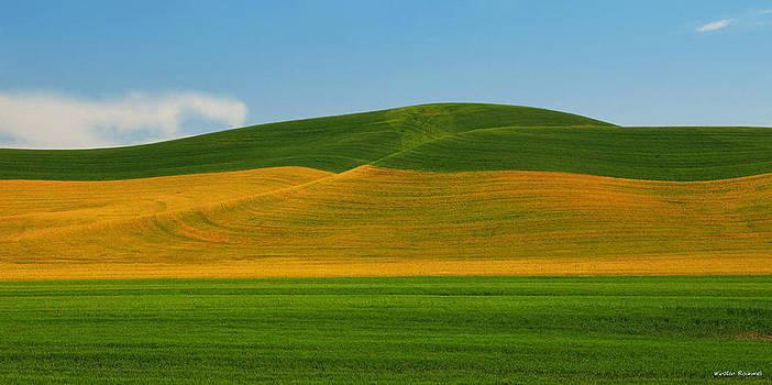 Palouse Panorama by Winston Rockwell