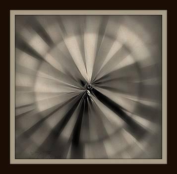 Partial Vision by Rose Szautner