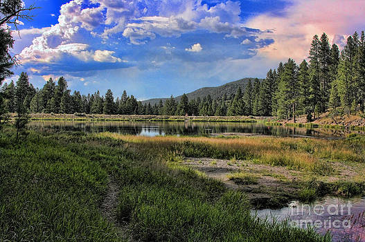 Pine Valley Utah by Mike Canter
