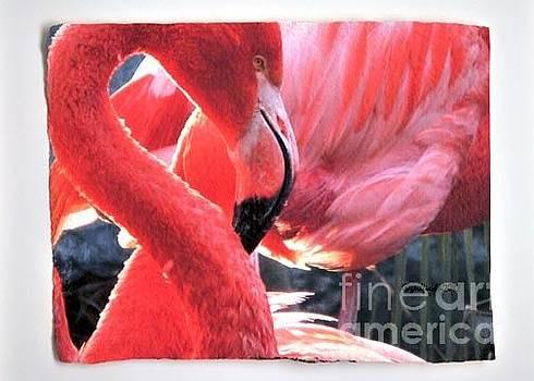 Pink Flamingo by Gail Fischer