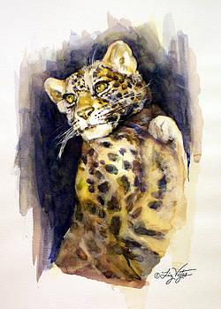 Liz Viztes - Portrait of a Young Snow Leopard
