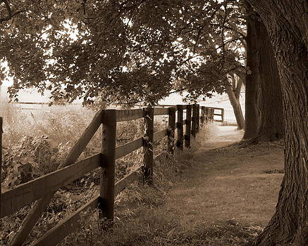 Rail Fence by Kristal Kobold