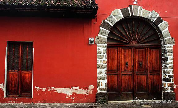 Red Building Wood Door by Alisa Seneor