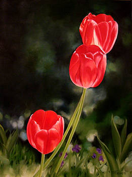 Red Tulips by Donna Francis