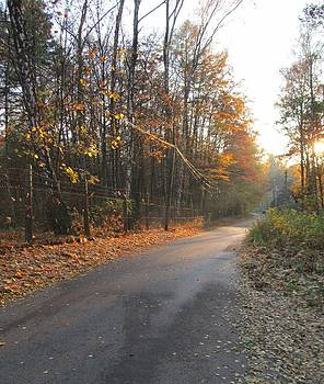 Wojtek Kowalski - Road