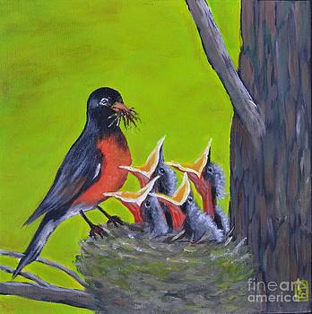 Robin Family by Holly Donohoe