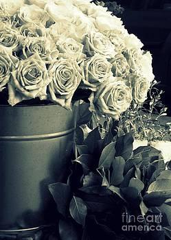 Shawna Gibson - Roses