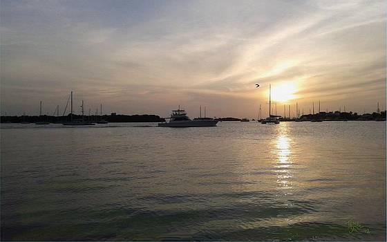 Tony Rodriguez - Salinas Bay