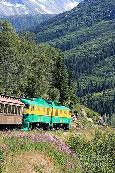 Sophie Vigneault - Scenic Train in Alaska