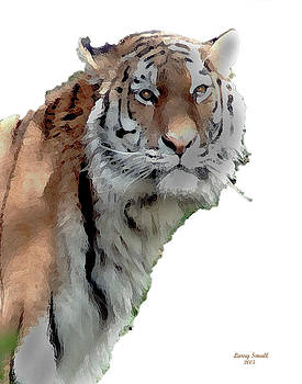 Sitting Tiger by Larry Small