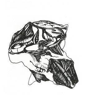 Skull by Dipak Parmar