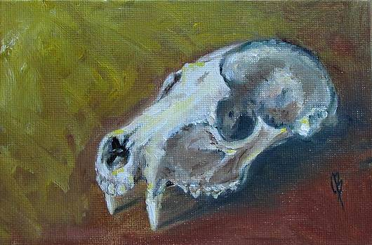 Skull by Joyce Brandon