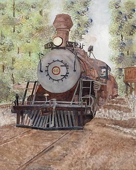 Skunk Train by Gary Roderer