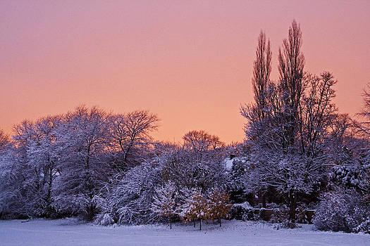 David Pringle - Snow Scene at Sunrise