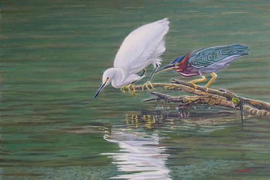 Snowy Egret Green Heron by Otto Trott