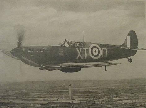 Spitfire by Dan Lamperd