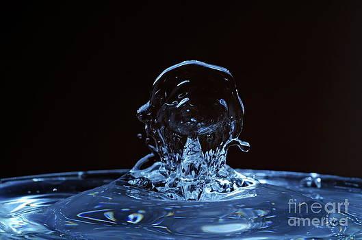 Sami Sarkis - Splashing Water Droplet shaping human profile