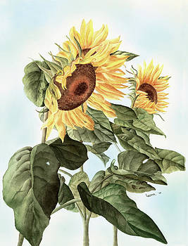 Sunflowers by Leona Jones