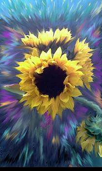 Sunflowers1 by Carole Joyce