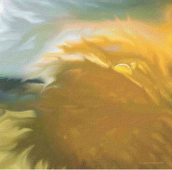 Sunkissed Tumbleweeds by Strong Heart