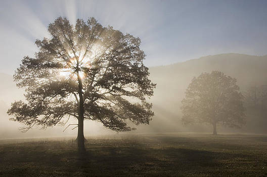 Sunrise in Cades Cove by Larry Lynch