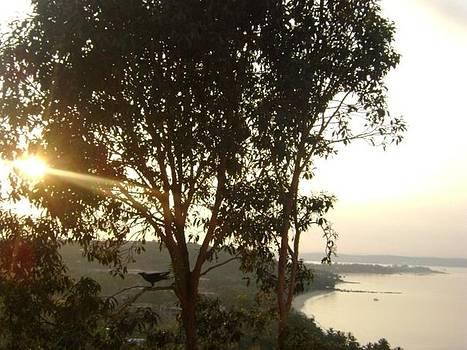 Sunrise in Goa by Mamta Joshi