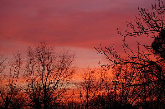 Sunrise by Paul Thomley