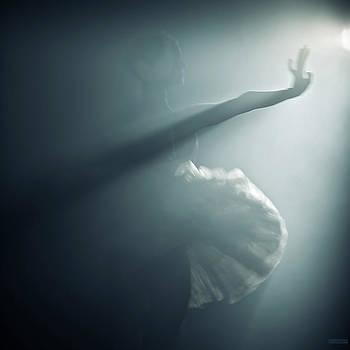 Swan Wing by Nikolay Krusser