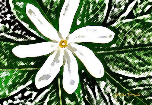 James Temple - Tahitian Gardenia