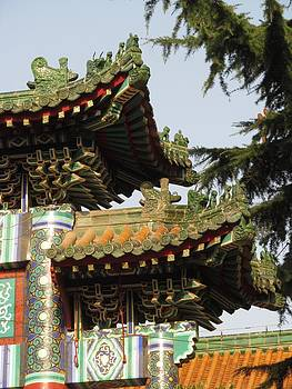 Alfred Ng - temple roof