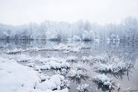 Texas Snow by Anna Crowder
