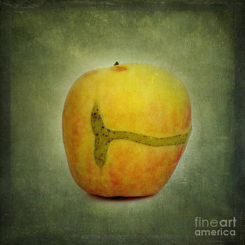 BERNARD JAUBERT - Textured apple