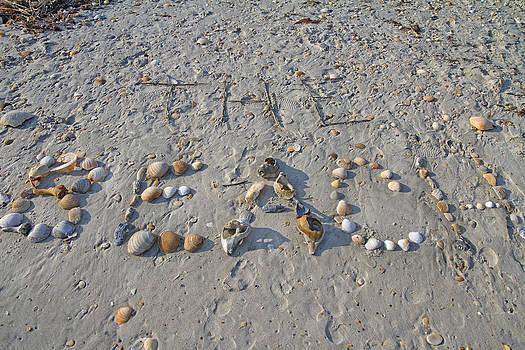 The Beach by Betsy Knapp