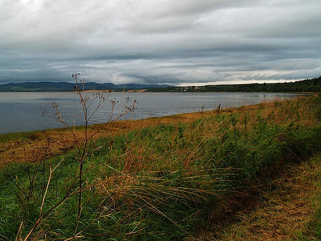 The Beauly Firth by Steve Watson