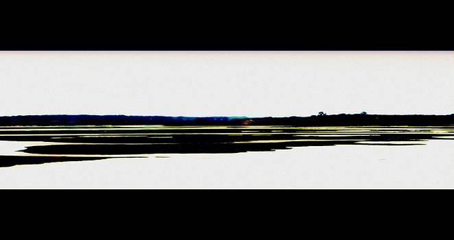 Marysue Ryan - The Marsh