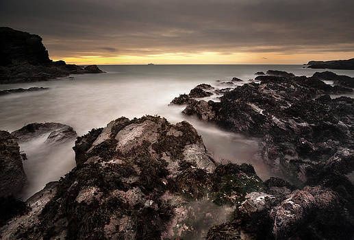 The Reef by Andy Astbury