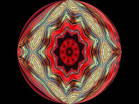 The Shield by Yvette Pichette