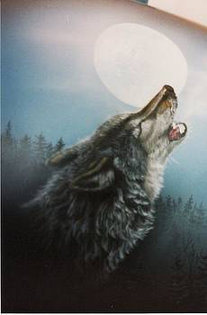 Timber Wolf by Al  Brown