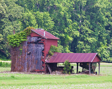 Terry Shoemaker - Tobacco Barn