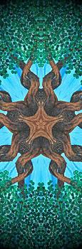 Tree Star by Heather  Hubb