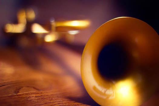 Trumpet by Robert Mirabelle