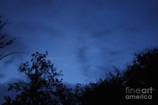 Twilight by Delaine Miller Sweat