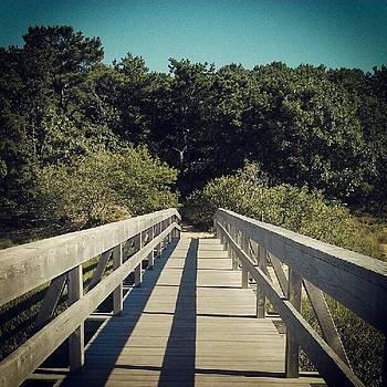 Uncle Tim's Bridge by Linda Cordner