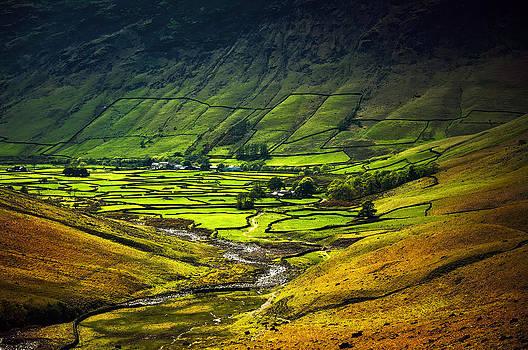 Svetlana Sewell - Valley